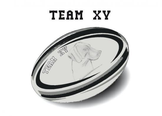 logo_teamXV
